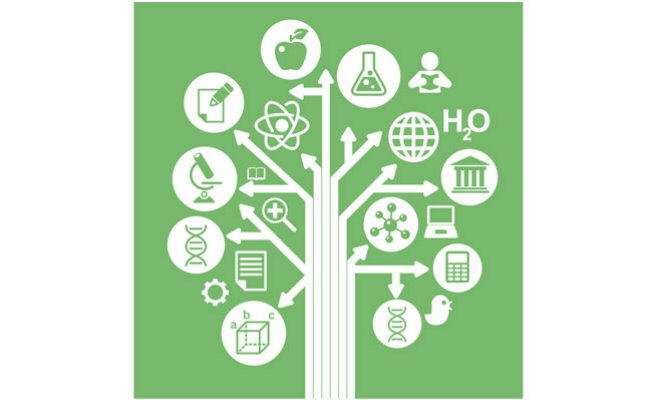 Indicadores Chave de Desempenho Organizacional e suas Dimensões Ambientais